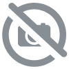 Baguette Harry Potter et carte du Maraudeur - Blister